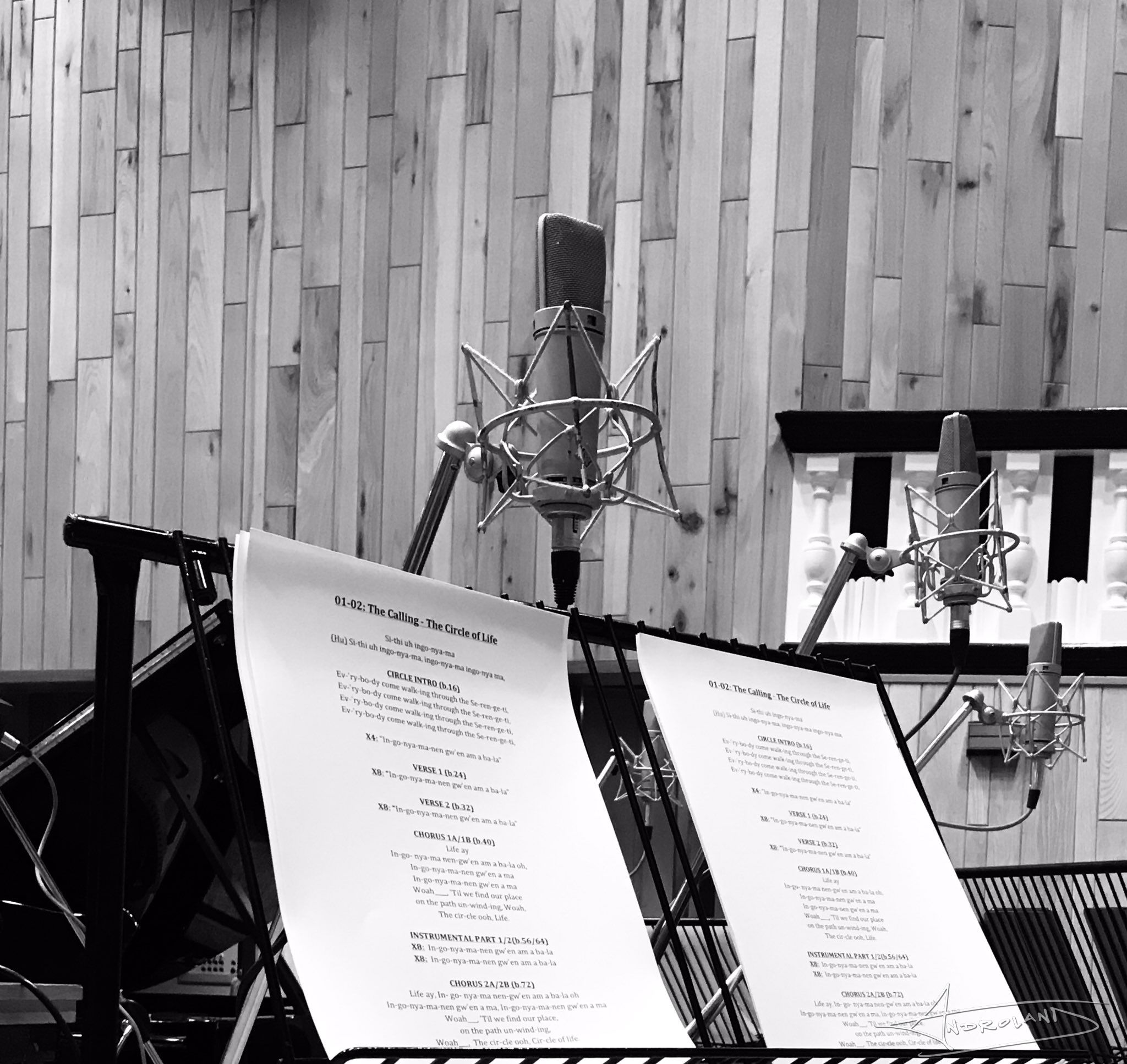 Lion King Recording 03